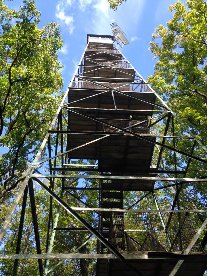 Seneca Fire Tower at Cook Forest State Park. 2015