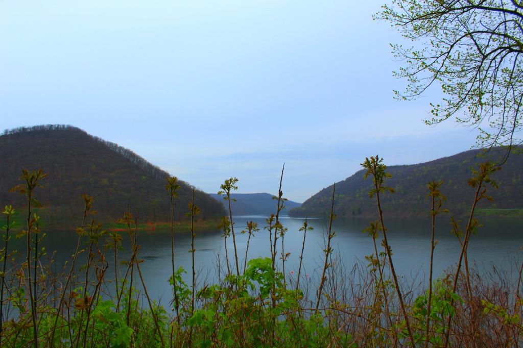 Allegheny Reservoir 12