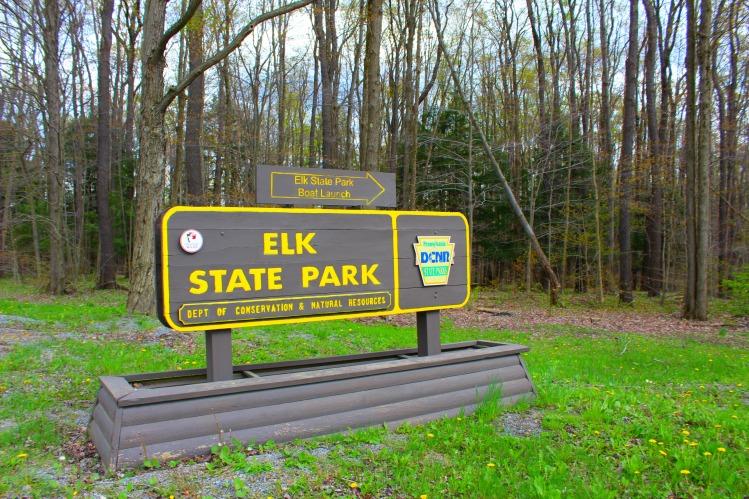 Elk State Park 2