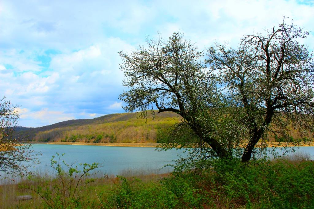 Elk State Park 2016